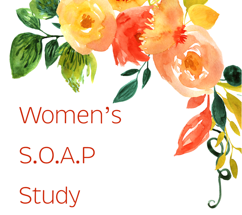 Women's SOAP